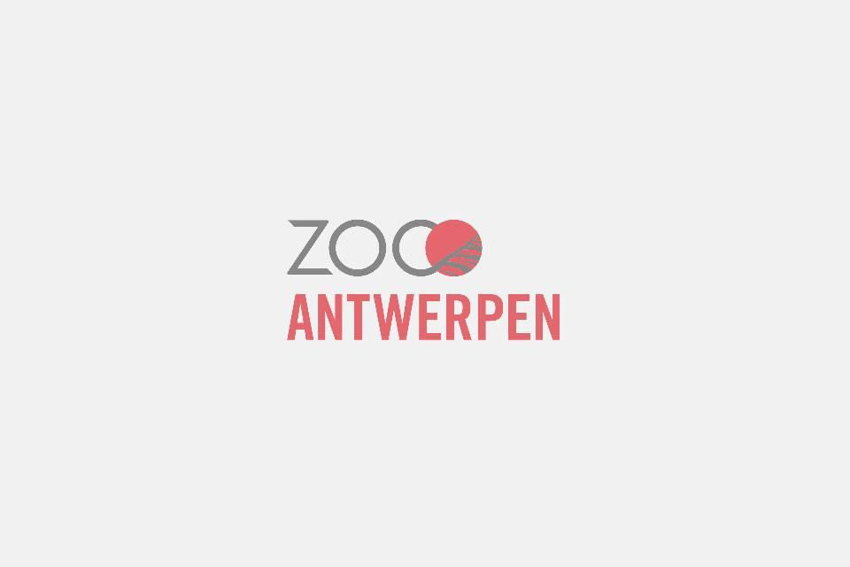 ZOO Antwerpen / Jonas Verhulst