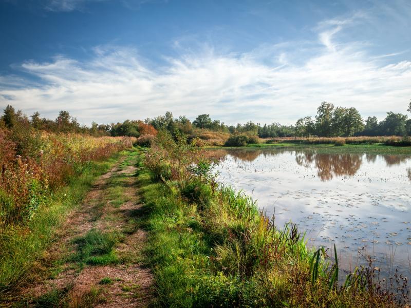 Nieuw boek natuurgebied De Zegge