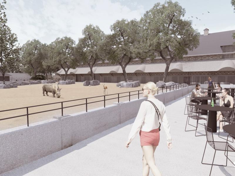 Twee nieuwe witte neushoorns krijgen gerestaureerd Rundergebouw als indrukwekkende thuis