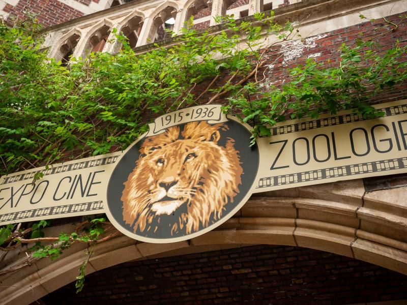 175 jaar ZOO Antwerpen: feestprogramma met Expo Cine ZOOlogie